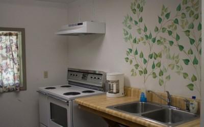Lodge - Kitchen